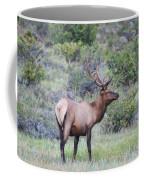 Colorado Elk Coffee Mug