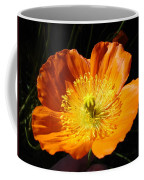 Colorado Flower Coffee Mug