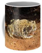 Colorado River Toad Coffee Mug