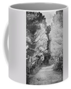 Colorado Rocky Mountain Aspen Road Portrait Bw Coffee Mug