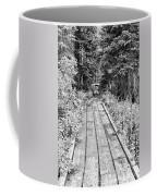 Colorado Rocky Mountain Forest Path Bw Coffee Mug