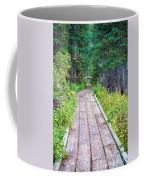 Colorado Rocky Mountain Forest Path Coffee Mug