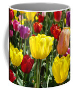 Colorful Bright Tulip Flowers Field Tulips Floral Art Prints Coffee Mug