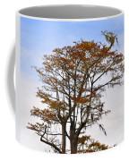 Colorful Cypress Coffee Mug