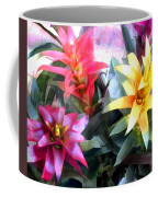 Colorful Mixed Bromeliads Coffee Mug