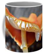 Colorful Mushrooms Coffee Mug