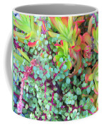 Colorful Succulent Plants For You Coffee Mug