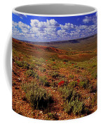 Colorful Valley From Fossil Lake Trailsil Bu Coffee Mug