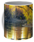 Columbia Bottoms Slough II Coffee Mug
