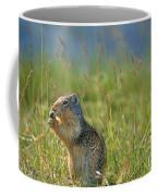 Columbia Ground Squirrel Feeding Coffee Mug