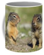 Columbian Ground Squirrels, Banff Coffee Mug