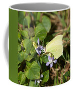 Common Brimstone Coffee Mug