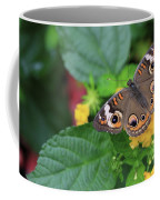 Common Buckeye II Coffee Mug