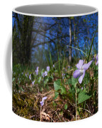Common Dog-violet Coffee Mug