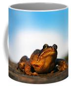 Common Frog Coffee Mug