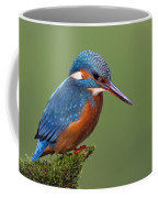 Common Kingfisher Alcedo Atthis Coffee Mug