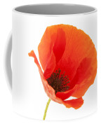 Common Poppy Flower Coffee Mug