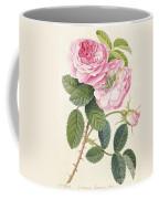 Common Provence Rose Coffee Mug by Georg Dionysius Ehret