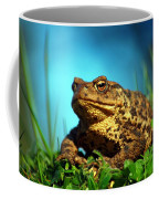 Common Toad Coffee Mug