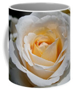 Common Wealth Glory Rose Coffee Mug