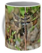 Common Whitetail Dragonfly - Plathemis Lydia - Female Coffee Mug