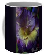 Complimentary Colors Coffee Mug by Susan Herber