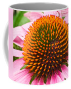 Cone Flower 7 Coffee Mug