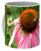 Cone Flower And Guest Coffee Mug