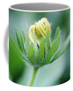 Cone Flower Rubeckia Hirta  Coffee Mug