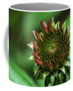 Coneflower Close-up Coffee Mug