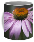 Coneflower Visitor Coffee Mug