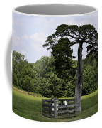 Confederate Grave Of Lafayette Meeks Appomattox Virginia Coffee Mug by Teresa Mucha