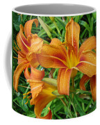 Consider The Lilies Of  The Field - Hemerocallis Fulva Coffee Mug