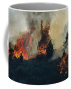 Controlled Fires Burn Eagerly In Small Coffee Mug by Melissa Farlow
