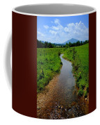 Cool Mountain Stream Coffee Mug by Frozen in Time Fine Art Photography