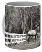 Coosaw - Outside The Fence Black And Wite Coffee Mug
