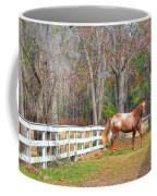 Coosaw - Outside The Fence Coffee Mug