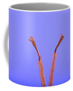 Copper Wire Coffee Mug