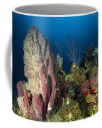 Coral Reef And Sponges, Belize Coffee Mug