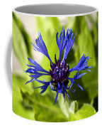 Cornflower Coffee Mug