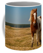 Cornish Pony Coffee Mug