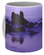 Corona Del Mar 5 Coffee Mug