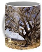 Cottonwood Tree At San Pedro House Coffee Mug