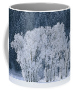 Cottonwood Trees With Frost Coffee Mug