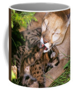 Cougar Mom Cleans Youngster Coffee Mug