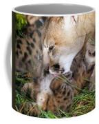 Cougar Mother Licks Kitten Coffee Mug