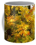 Country Color 10 Coffee Mug