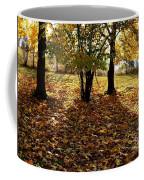 Country Color 11 Coffee Mug