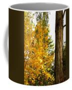 Country Color 19 Coffee Mug
