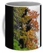 Country Color 2 Coffee Mug